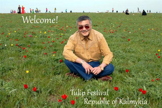 Festival del tulipan